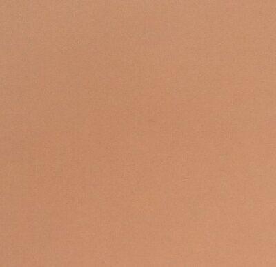 Ткань на клеевой основе «Бежевый»